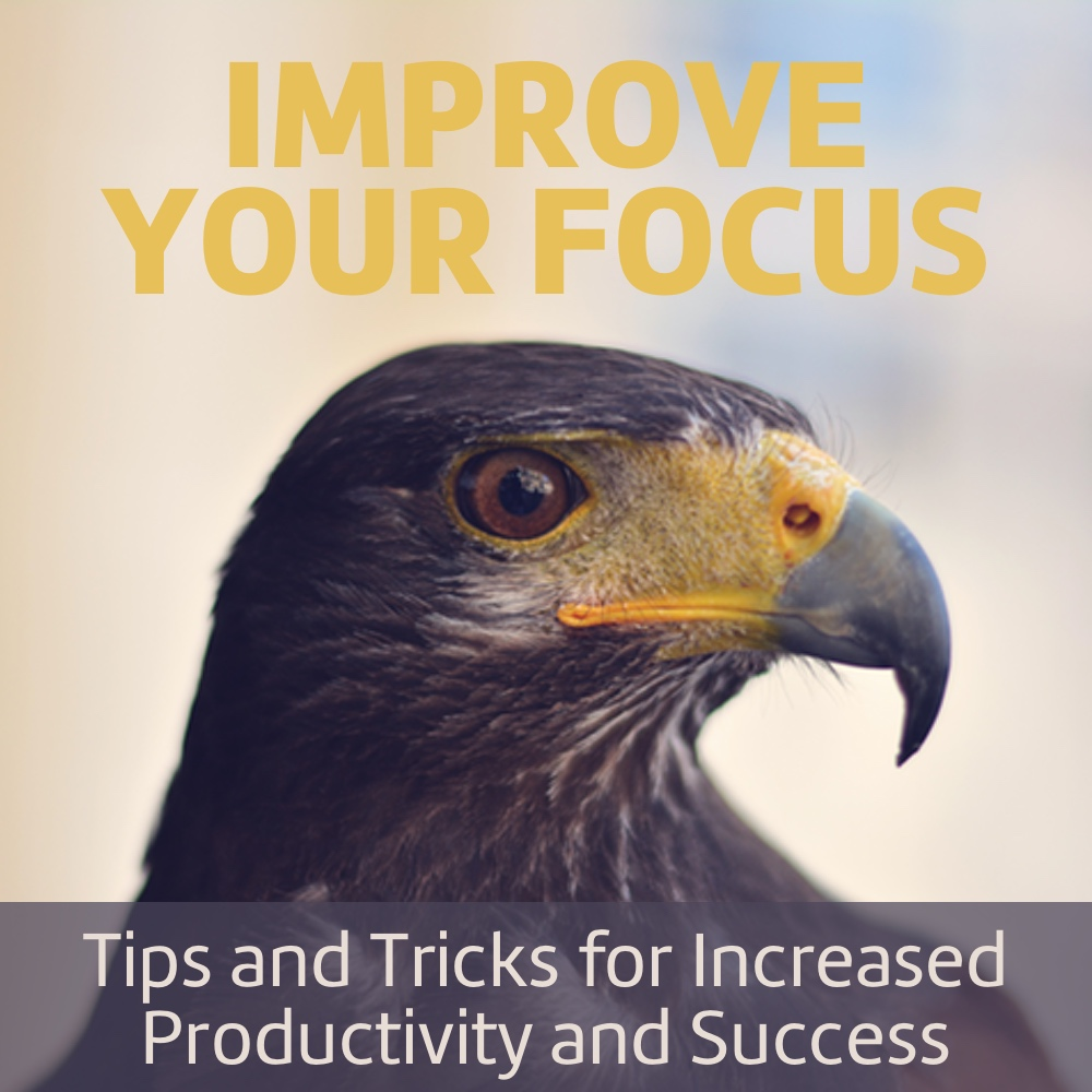 Tips and tricks for increased productivity and success